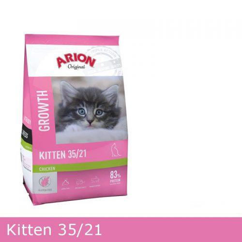 Arion Kat Kitten