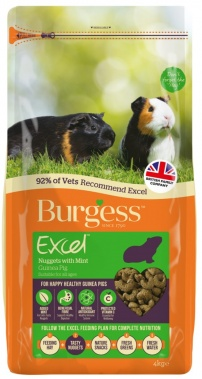 Burgess Guinea Pig Adult