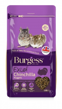 Burgess Chinchilla
