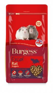 Burgess Rat