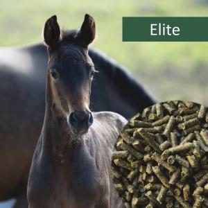 HorsePro Elite NAG