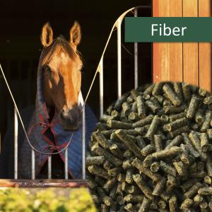 HorsePro Fiber