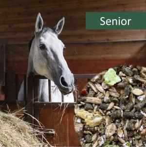 HorsePro Senior Hestefoder