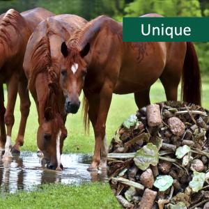 HorsePro Unique