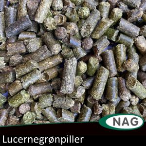 Lucernepiller