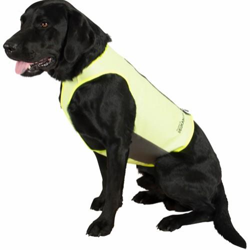 Hundetrøjer, jakker og veste