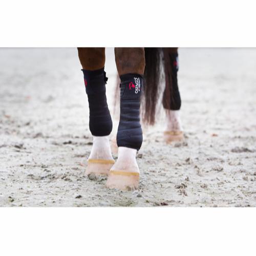 Bandage på hest