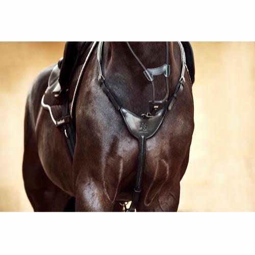 Fortøj Dian hest