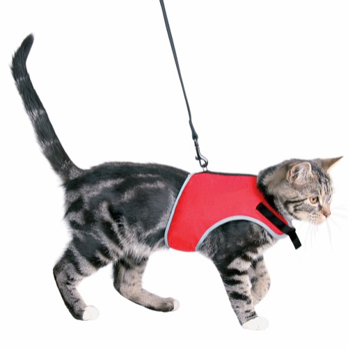 Kattesele soft XL