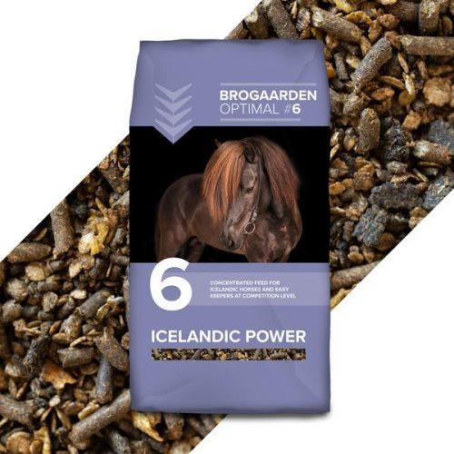 Icelandic power